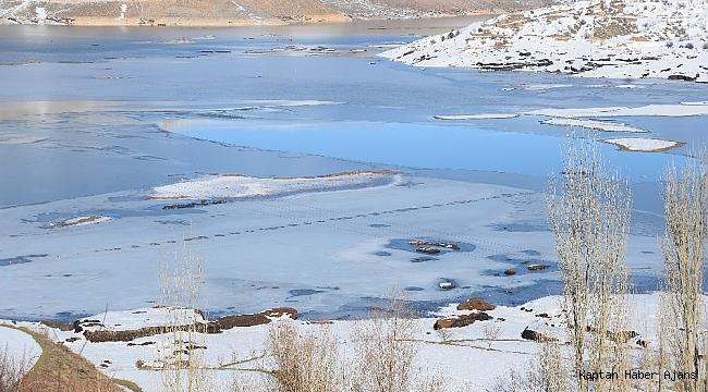 Yüzen adalar soğuktan dondu