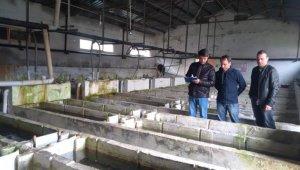 Alabalık yetiştiriciliği yapan tesisler denetlendi
