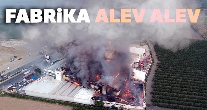 Alevler 5 saatin sonunda kontrol altına alındı!