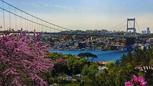 İstanbul Boğazı'nda Erguvan zamanı