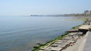 Marmara Denizindeki turunculuk büyük oranda normale döndü