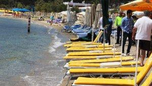 Ege Denizi'nde can pazarı
