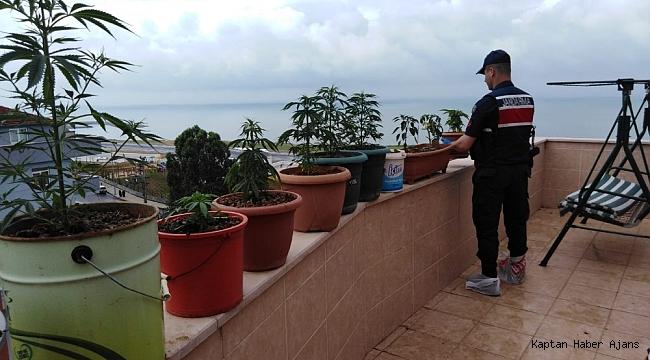Deniz manzaralı esrar balkonu