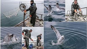 Yasak bitti, Vanlı balıkçılar 'Vira Bismillah' dedi
