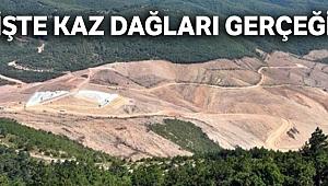 İşte Kaz Dağları gerçeği