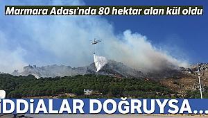 Marmara Adası yangınının ilk bilançosu açıklandı: 80 hektar alan kül oldu