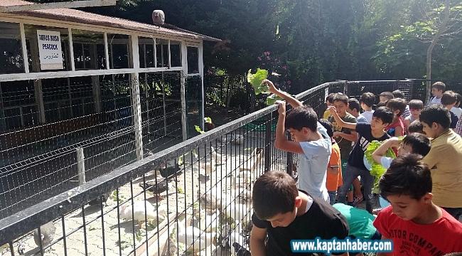 Öğrencilerden, Türkiye Deniz Canlıları Müzesi'ne ziyaret