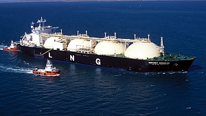 Rus doğalgaz üretici firmaları denizcilik şirketi kuracak
