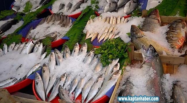 Balıkçı tezgahları dolunca fiyatlar düşmeye başladı