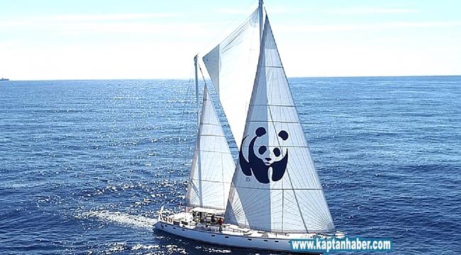 Blue Panda yelkenlisi İzmir Körfezi'ne demir attı