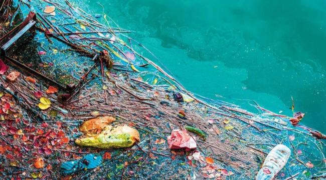 İzmir'de korkutan deniz kirliliği