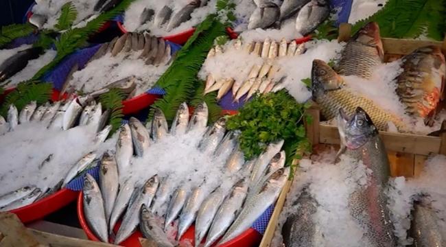 Balık fiyatları değişkenlik gösteriyor