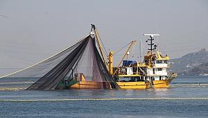 Kıyı balıkçılığı kayıt altına alınıyor