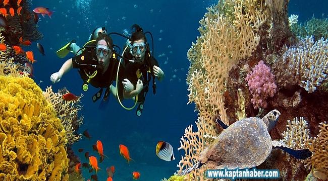 Akdeniz ülkeleri denizlerini koruyamıyor