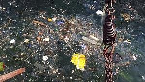 Büyükada'da 25 ton çöp ve atık toplandı