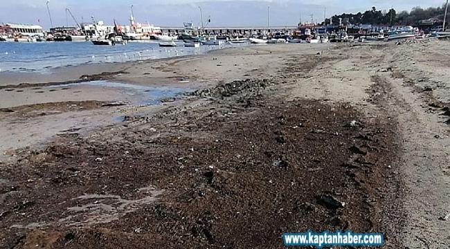 Deniz çekildi, 2 bin 500 yıllık liman ortaya çıktı
