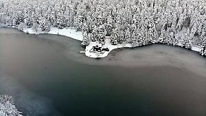 Gölcük Tabiat Parkı'ndaki göl buz tuttu