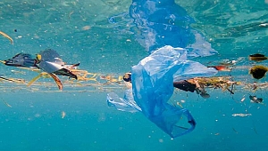 Hindistan gemilerde tek kullanımlık plastikleri yasaklanıyor