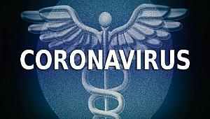 Koronavirüs salgınında ölenlerin sayısı 2 bini aştı