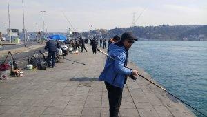 Balıkçılar öğle saatlerinde Arnavutköy sahiline akın etti
