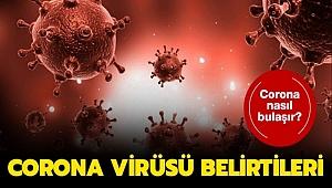 Çin'de koronavirüs nedeniyle hayatını kaybedenlerin sayısı 3 bini aştı