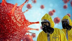 Dünyanın merak ettiği soru! Havalar ısınınca virüs ölecek mi?