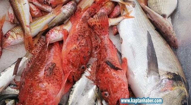 Adrese teslim balık