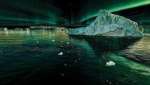 Aydınlanan Geceler Deniz Canlıları için Tehdit mi