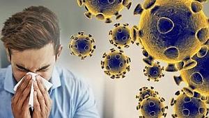 Bilim Kurulu Üyesi Azap: Koronavirüsün Türkiye'de pik yapmasına bir ay daha var