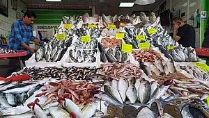 Tezgahlarda balık fiyatları ucuzladı