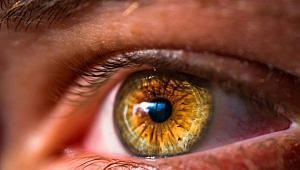 Türk Oftalmoloji Derneği: Her kırmızı göz, koronavirüs göstergesi değildir