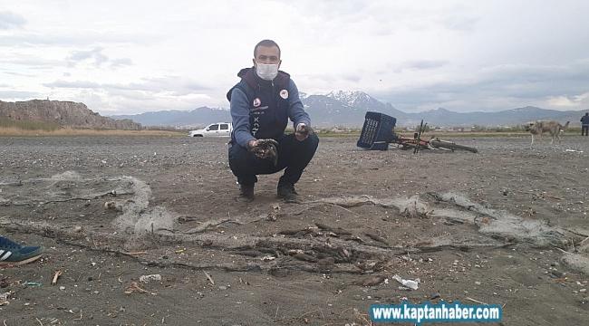 Bisikletli kaçak avcı, avladığı 150 kilogram balığı bırakıp kaçtı