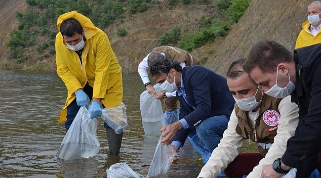 Demirci'de 9 bin balık yavrusu suyla buluştu