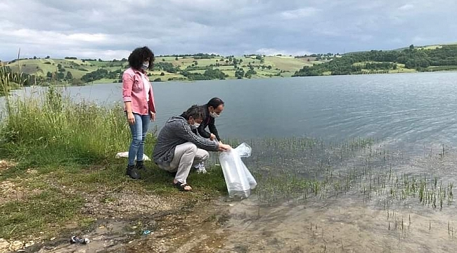 Kandıra'nın göletlerine 15 bin adet yavru sazan balığı salındı