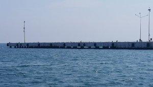 Olta balıkçılarının yerini martılar aldı