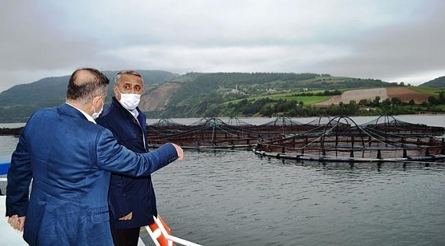 Samsun'da balık çiftliklerinde yılda 16 bin tondan fazla balık üretiliyor