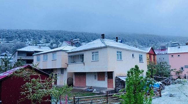 Sivas'ta Mayıs karı