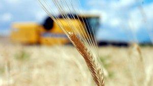 Tarımsal girdi fiyat endeksi Mart'ta arttı