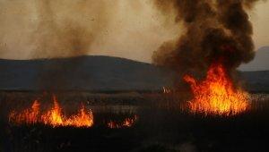 Birçok kuş türünün yaşadığı sazlık alan alev alev yandı