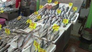 Toptan balık alıcıları kapalı olunca balık çeşitliliği vatandaşa kaldı
