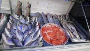 Vatandaşlar ucuzlayan balığa yöneldi