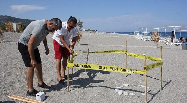 Pandemi döneminde boşalan sahiller Caretta Caretta'lara kaldı