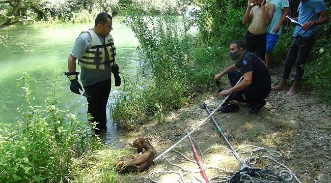 Suyun aniden yükselmesiyle şelalede mahsur kalan köpek ölmek üzereyken kurtarıldı