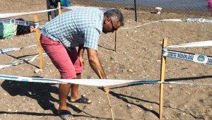 Caretta yuvalama alanları genişliyor