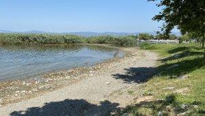 İznik Gölü'nde korkutan görüntü
