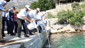 Kaş'ta 15 bin yavru balık denize salındı