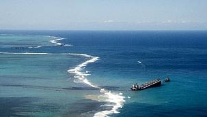 Mauritius'daki petrol felaketine karşı halk saçlarını bağışlıyor