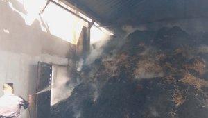 Paşaliman Adasında yangında 3 ve 1 samanlık yandı
