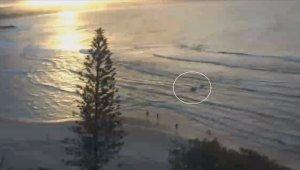 Avustralya'da köpek balığı saldırısı can aldı