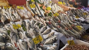Balık sezonu açıldı, fiyatlardaki düşüş tatmin etmedi